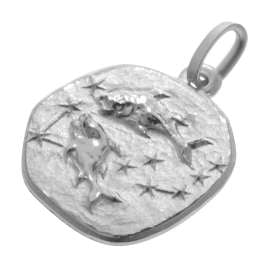trendor 08443 Silver Zodiac Pisces with Necklace