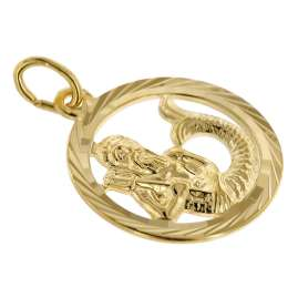trendor 75940-02 Zodiac Sign Aquarius Gold 333 Pendant Ø 16 mm + Necklace
