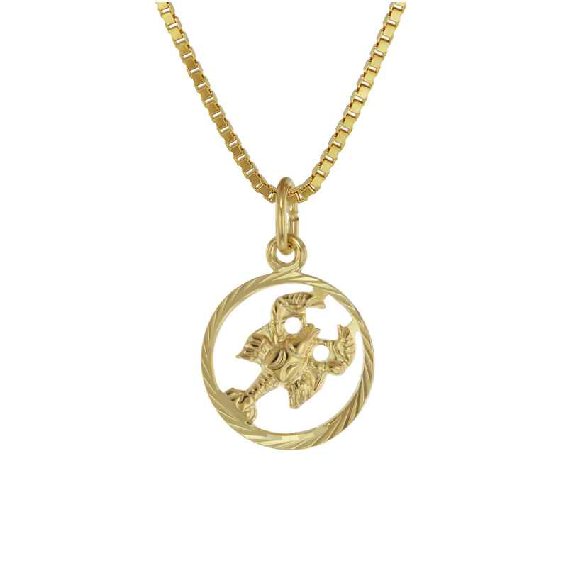 trendor 75990-07 Zodiac Sign Cancer 333 Gold + Gold-Plated Childrens Necklace 4260641759927