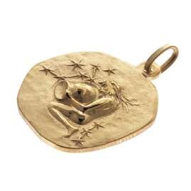 trendor 39070-02 Wassermann Sternzeichen Anhänger Herrenkette Gold auf Silber
