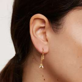 P D Paola AR01-315-U Ladies' Hoop Earrings Breeze