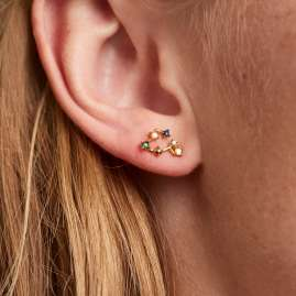 P D Paola AR01-403-U Women's Earrings Star Sign Pisces Gold Plated Silver