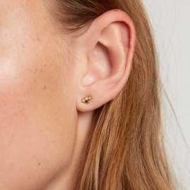 P D Paola AR01-409-U Damen-Ohrringe Sternzeichen Jungfrau Silber vergoldet