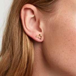 P D Paola AR01-413-U Damen-Ohrringe Sternzeichen Steinbock Silber vergoldet