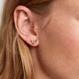 P D Paola AR01-402-U Damen-Ohrringe Sternzeichen Wassermann Silber vergoldet