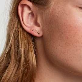 P D Paola AR01-404-U Damen-Ohrringe Sternzeichen Widder Silber vergoldet