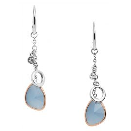 Fossil JF03073998 Ladies' Drop Earrings Unique Teardrop