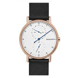 Skagen SKW6390 Mens Watch Signatur
