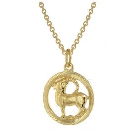 trendor 75940-01 Zodiac Sign Capricorn Gold 333 Pendant Ø 16 mm + Necklace