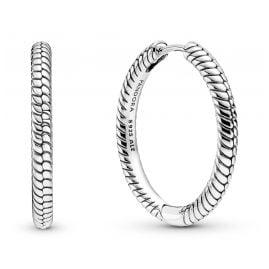 Pandora 299532C00 Charm Earrings for Ladies Silver