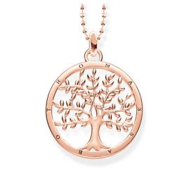 Thomas Sabo KE1660-415-40 Halskette Tree of Love Rosé