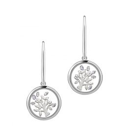 Astra E5249-CZ Ladies Earrings Tree