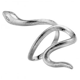 Xenox XS4240 Silver Ladies' Ring Paradise