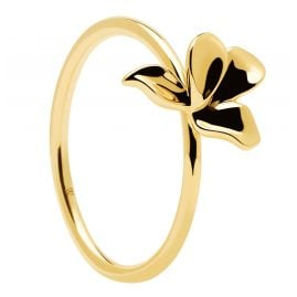 P D Paola AN01-182 Women's Ring Narcise Gold Plated Silver