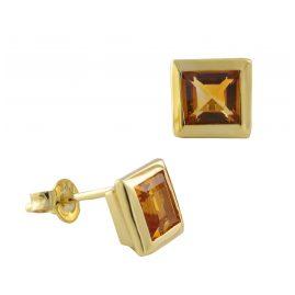 Acalee 70-1018-05 Ladies' Earrings Gold 333 / 8K with Citrine