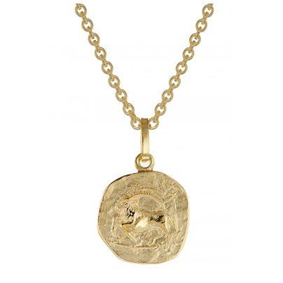 trendor 75905-01 Sternzeichen für Kinder Steinbock Gold 333 Anhänger + Kette 4260641759019