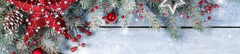Weihnachtsgeschenke Made in Germany