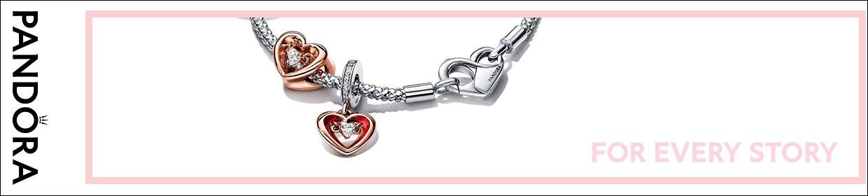 Pandora Medaillons und Elemente